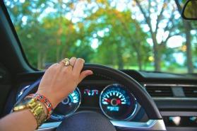 steeringwheeldashboardwoman2pics